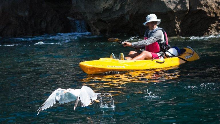 Passear de Kayak - Sesimbra Selvagem