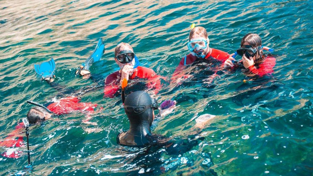 Snorkeling - Descobrir o Parque Marinho
